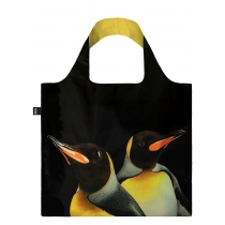 National Geographic Photo Ark Kuningpingviinid